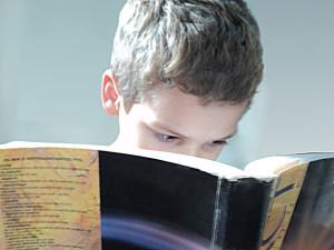 Children's Book Harvest
